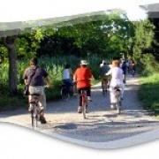 """Leggi """"Giro in bici con l'AVIS a Volta Mantovana"""""""