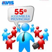 """Leggi """"23 marzo 2013 Assemblea Elettiva Avis Provinciale"""""""