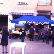 "Leggi ""10 novembre: ""castagnata AVIS"" a Castellucchio"""