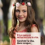 """Leggi """"Giornata Mondiale del Donatore: Il sangue ci unisce tutti"""""""